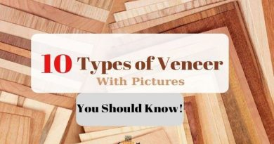 10 Types Of Wood Veneer [You Should Know]