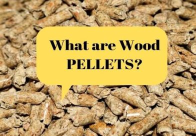 What are Pellets? Here is the Answer