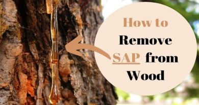 how to remove sap from wood