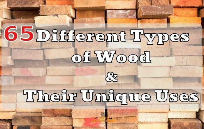 65 Different Types of Wood and Their Unique Uses [ Special]